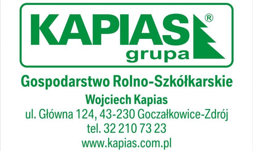 Współpraca zfirmą – Grupa Kapias