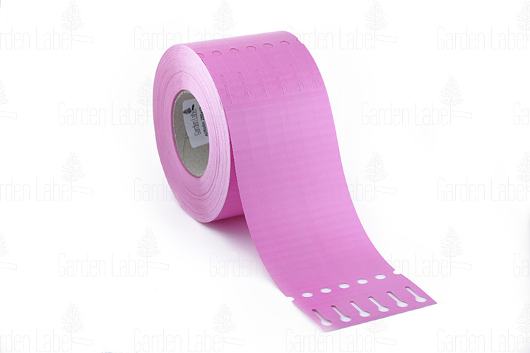 Allfolin loop label – 250x17x10-15, pink