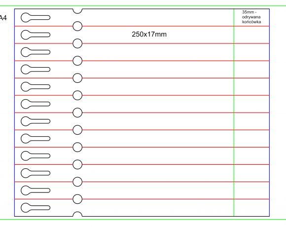 Etykiety pętelkowe – laser