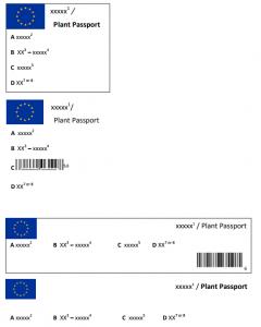 Paszportyzacja roślin ipaszport roślin - nowy system zdrowia roślin