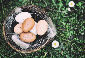 Zdrowych Świąt Wielkanocnych. Fot.pixabay.com