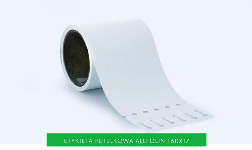 Etykieta pętelkowa 160x17mm dooznaczania małych roślin nałodydze