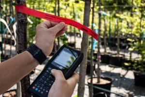 Kolektor danych toprzenośne urządzeni, które ułatwia prowadzenie szkółki. Kolektor danych odczyta, przetworzy izapisze wswojej pamięci informacje oroślinie (Fot.Garden Label).