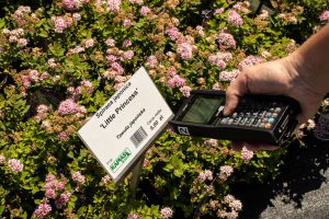 Kolektor danych pomoże Ci łatwo iszybko skompletować zamówienie dla klienta. Wystarczy, żezeskanujesz kod kreskowy produktu (fot.Garden Label).